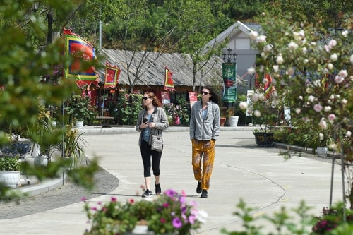 Thiên đường đỗ quyên Fansipan hấp dẫn khách du lịch quốc tế - Ảnh 4