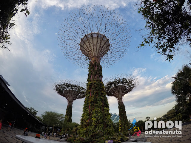 List of Free Things To Do in Singapore