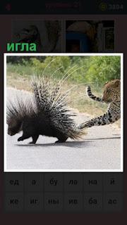 через дорогу бежит животное с иглами и его леопард лапой хочет достать