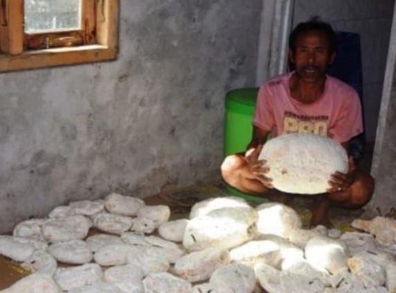 VIRAL! Wow... Nelayan asal Bengkulu Ini Kaya Mendadak Berkah dari Muntahan Paus