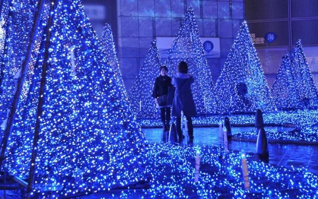 67cf3dd3d57 Focos LED  Luces de navidad con leds