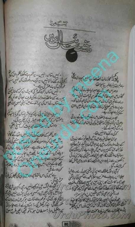 Dasht e saiban Asia Mirza free Online Reading Free online social novels