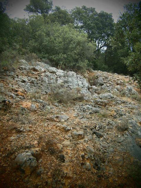 La sima de Campillos Sierra. Autor: Miguel Alejandro Castillo Moya