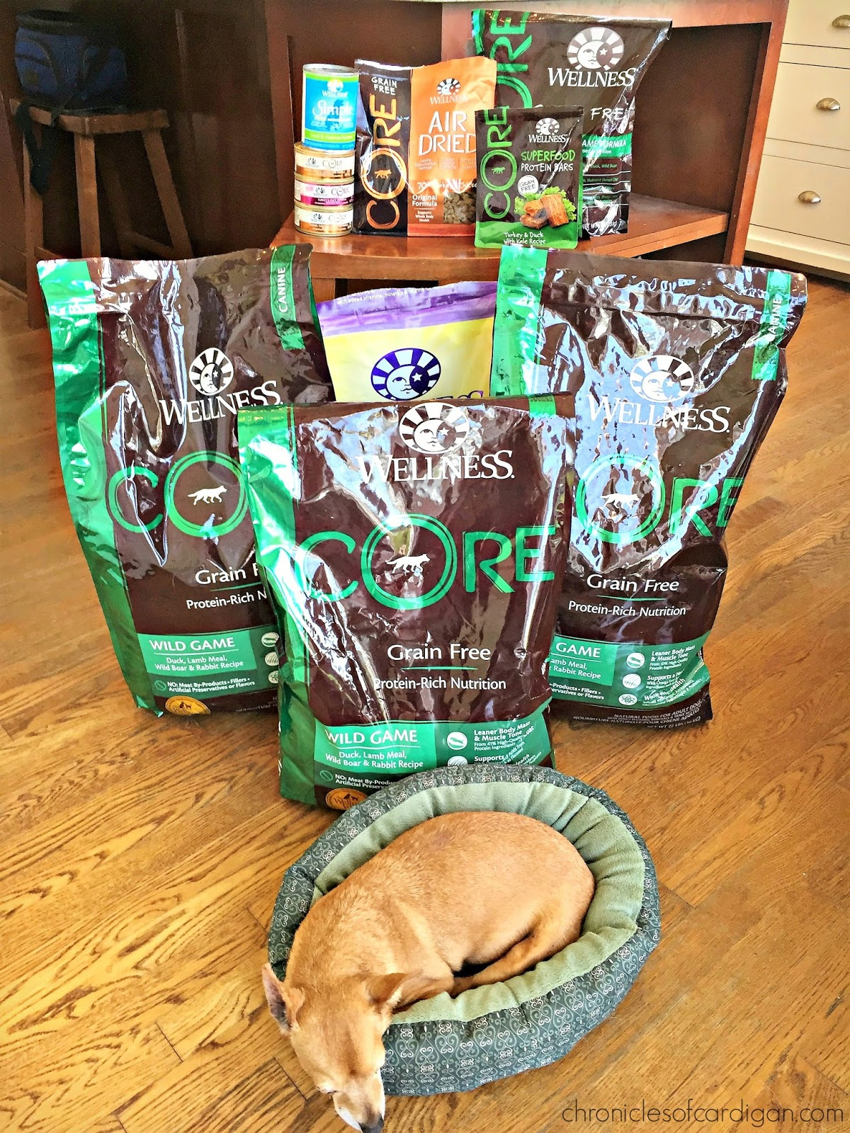 Wellness Core Natural Grain Free Dry Dog Food Philippines