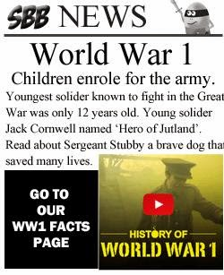 http://www.superbrainybeans.co.uk/history/ww1-facts.html
