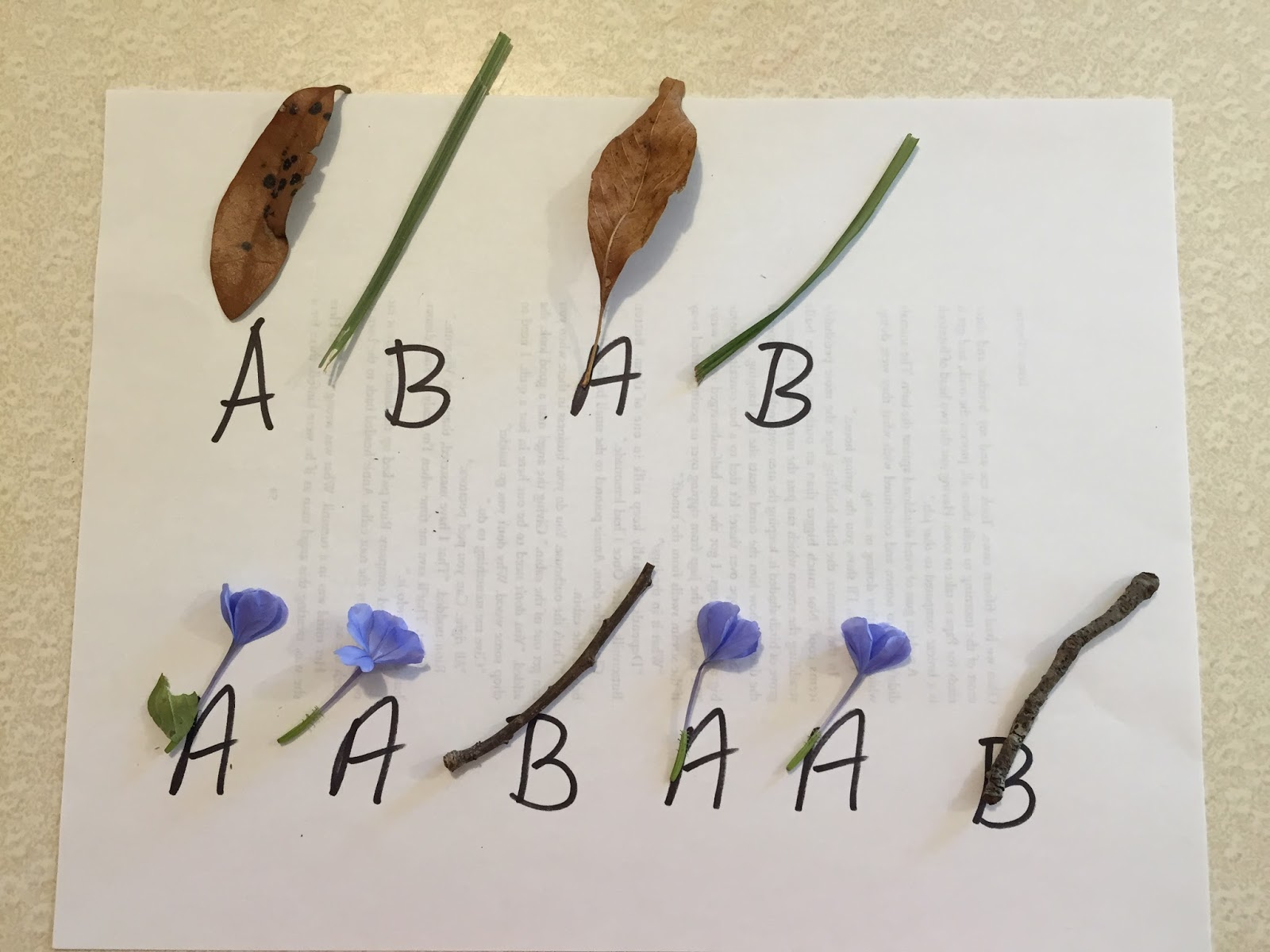 Kindergarten And Mooneyisms Patterning With Nature