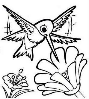 Beija Flores 25 Desenhos Para Colorir Imprimir 05 De Outubro