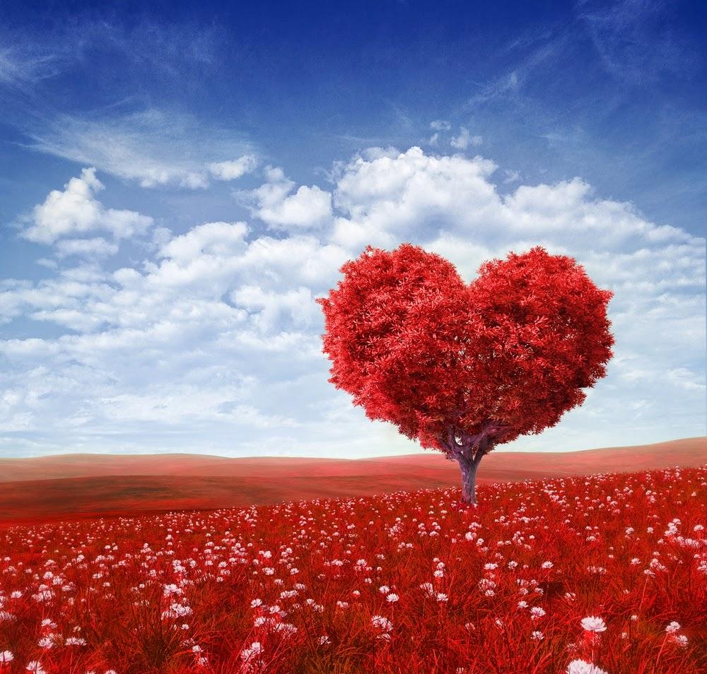Les plus belles citations d'amour,proverbes,sms,poésies,textes ...
