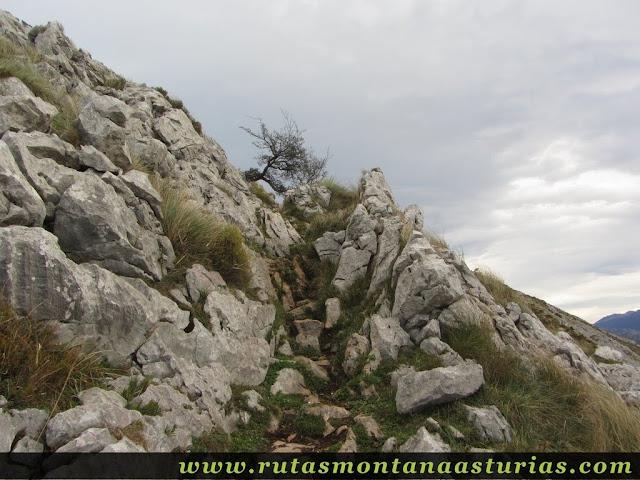 Sendero rocoso al Benzúa