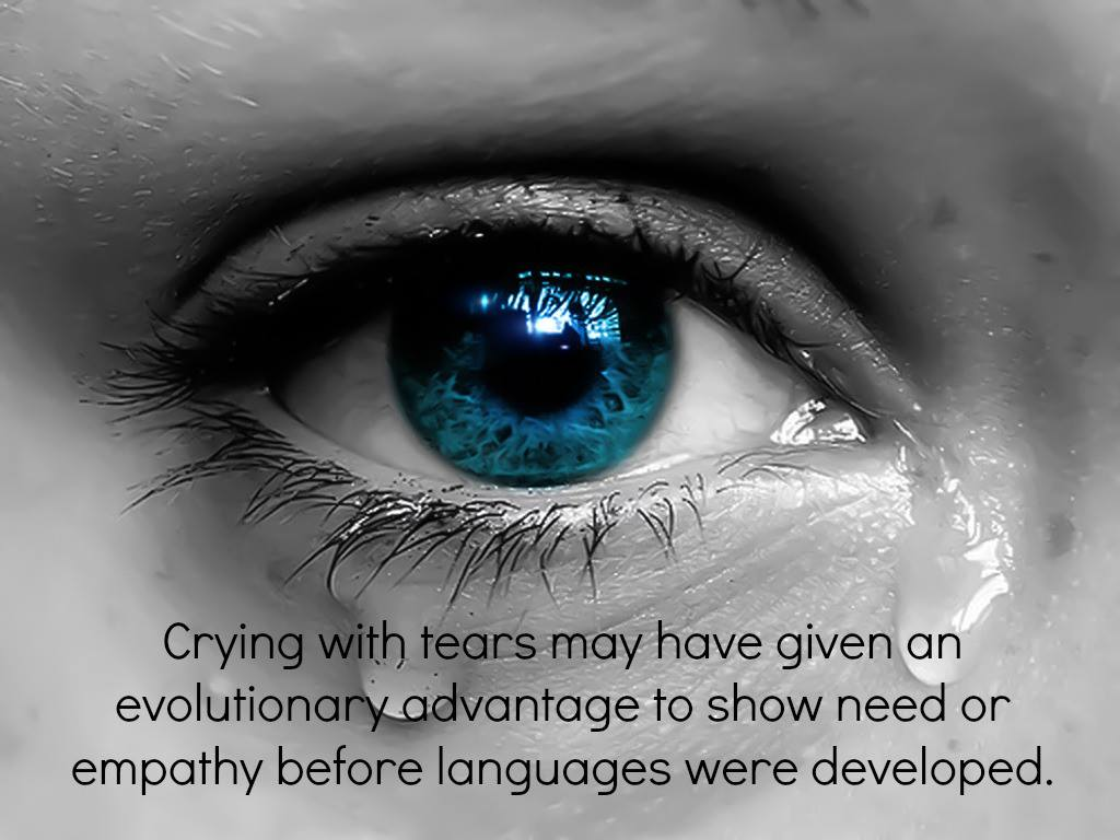 Why Do We Shed Tears When We're Sad? (VIDEO)