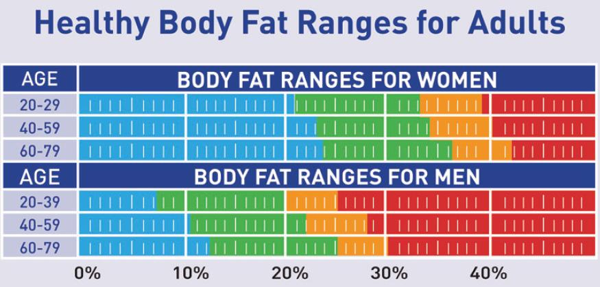 body fat percentage range by age
