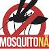 Secretaria de Saúde alerta a comunidade para medidas de prevenção ao Aedes Aegypti em Uruguaiana
