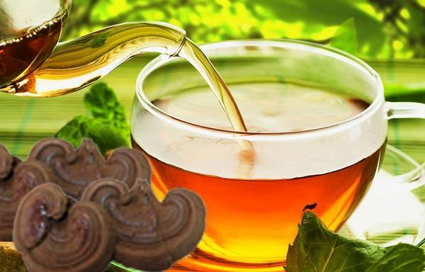 chế biến trà nấm linh chi đỏ