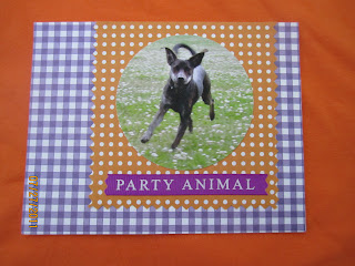 Birthday party invitation, Dog birthday, diy invitation
