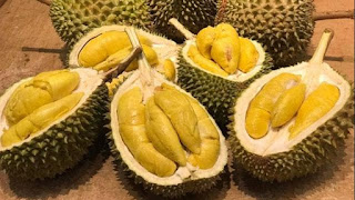 The Amazing Of Health Benefits  Of Durian for a Healthy Diet That Should Be Known - Healthy T1ps