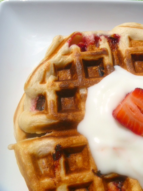 Strawberry Vanilla Waffles with Yogurt - These waffles are bursting with strawberries inside, along with a hint of vanilla. The perfect breakfast! - Slice of Southern