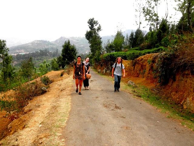Trekking in Ooty