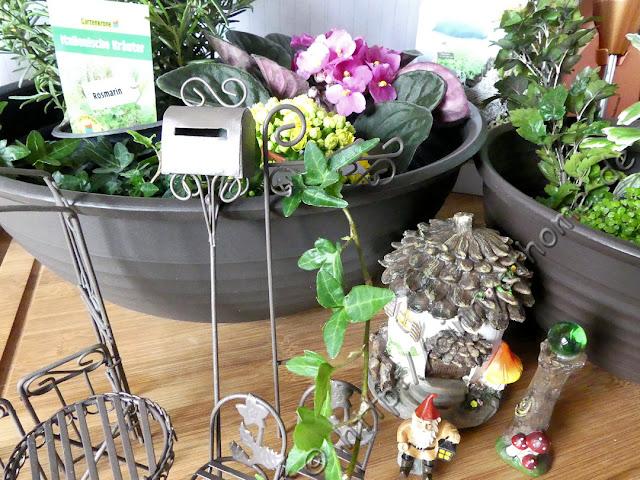 cinny home mini gardening mit den sets von hobbyring pflanzen diy creativworld. Black Bedroom Furniture Sets. Home Design Ideas