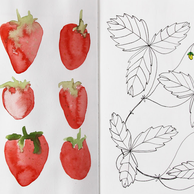2x2, #2x2sketchbook, strawberries, sketchbook, Dana Barbieri, Anne Butera