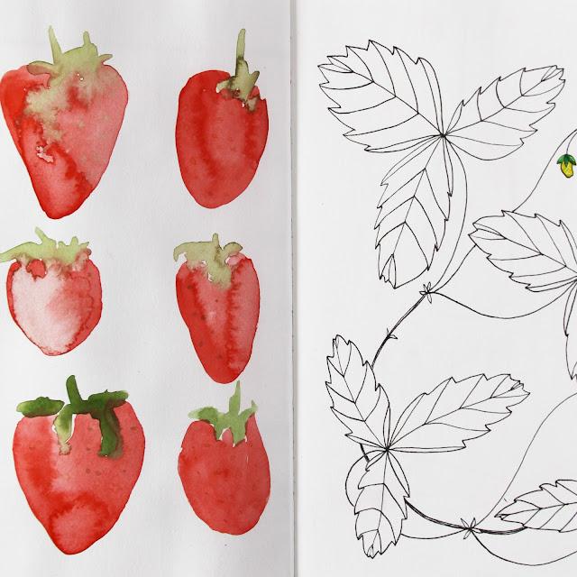 2x2, #2x2sketchbook, strawberries, sketchbook, Dana Barbieri, Anne Butera