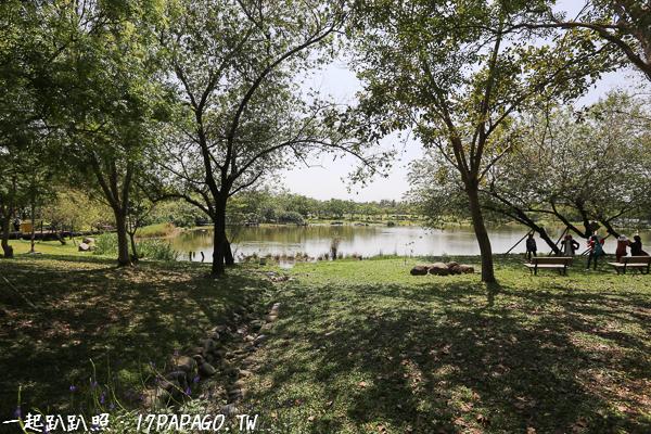 園區內很多草皮,可以帶家人來樹下野餐
