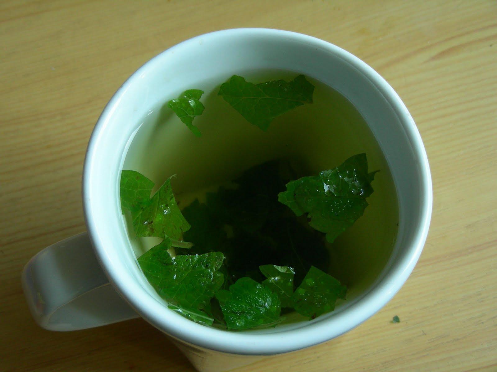 Vücut Arındırıcı Güzellik Çayı Tarifi