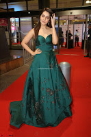 Raashi Khanna in Dark Green Sleeveless Strapless Deep neck Gown at 64th Jio Filmfare Awards South ~  Exclusive 151.JPG