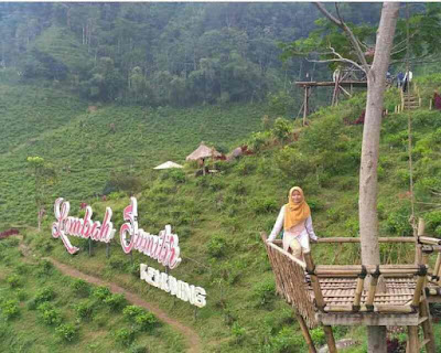 Info (Lokasi, Tiket & Penginapan) Kebun Teh Kemuning, alamat kebun teh kemuning, wisata solo