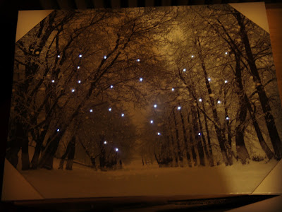 Christmas light up canvas