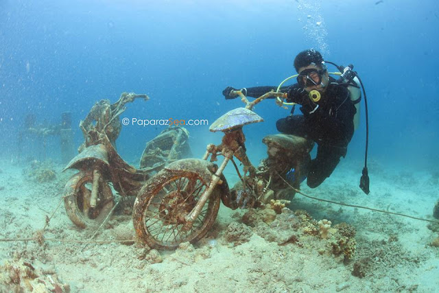 Jun V Lao, Underwater Photography, Paparazsea