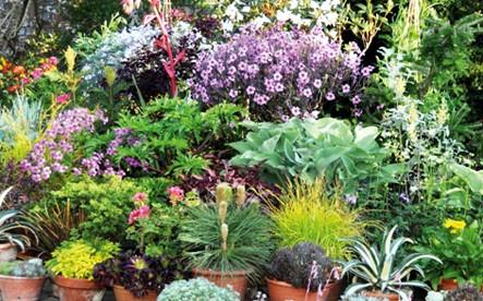 télikertépítés - növénykert