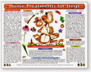 Natural Pet Healthcare