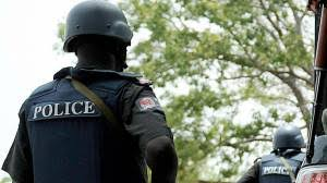 Man Arrested With Human Parts In Delta State