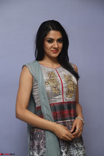 Sakshi Chaudhary Beautiful Emroidery Work Sleeveless Anarkali Dress 002.JPG