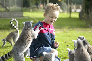 Child and lemurs