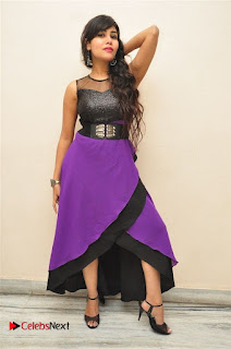 Telugu Actress Rachana Smith Stills at Money is Honey Audio Release  0065.jpg