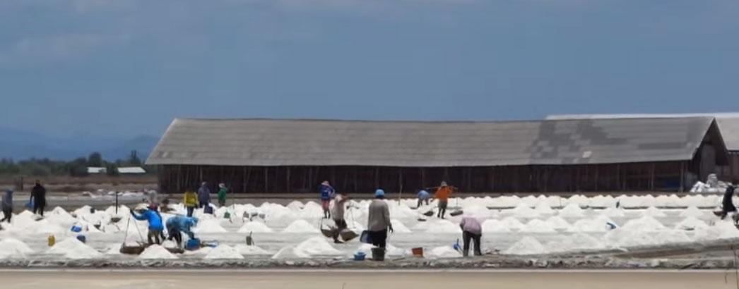 Φάρμες αλατιού στην Ταϊλάνδη (VIDEO)