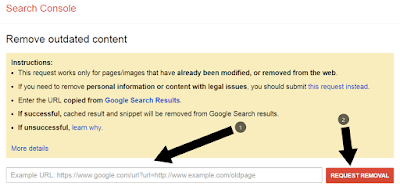 Remove outdated URL Google search
