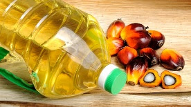 Indian Palm Oil Market