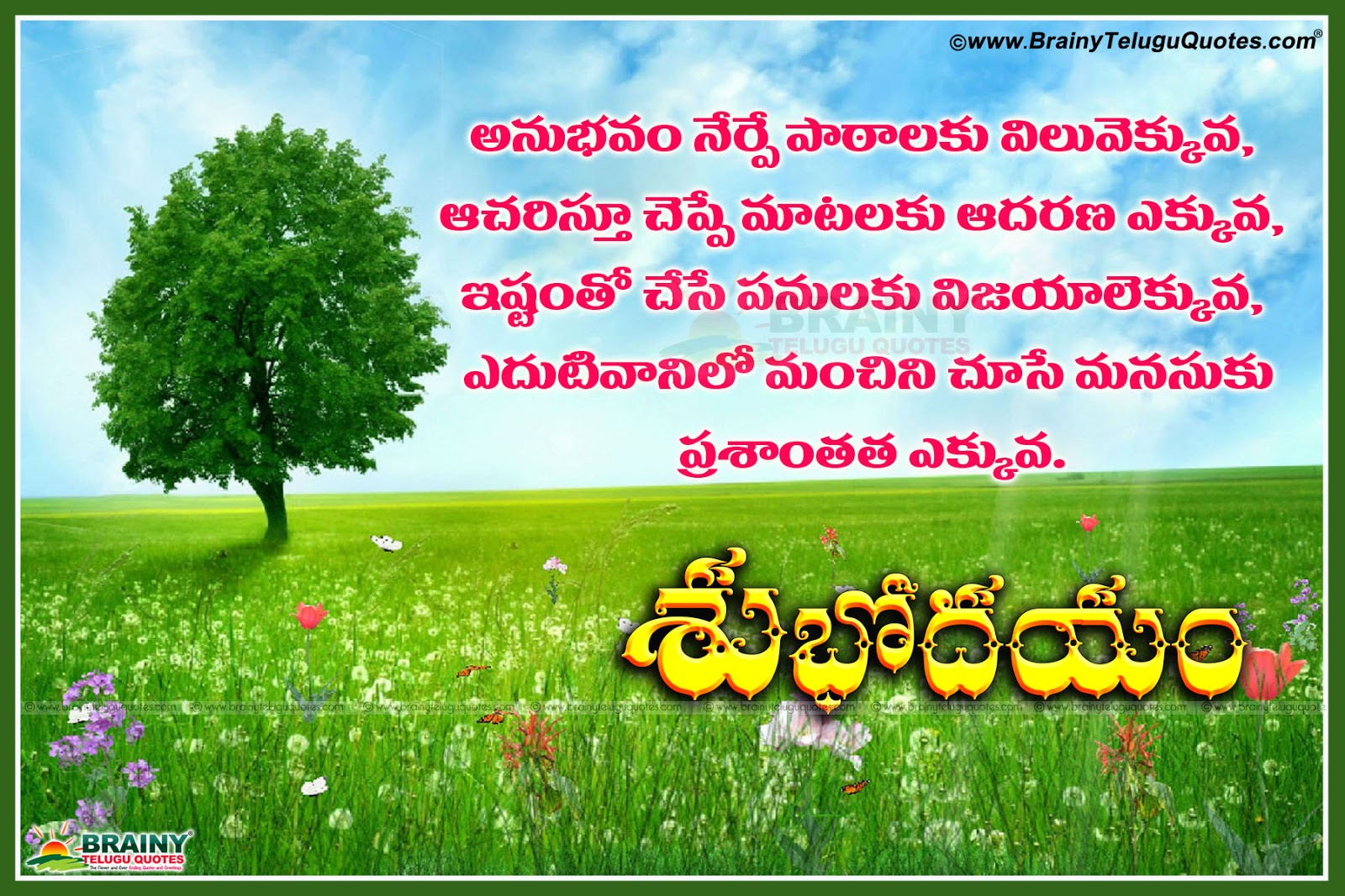 Imágenes De Good Morning Images With Life Quotes In Telugu