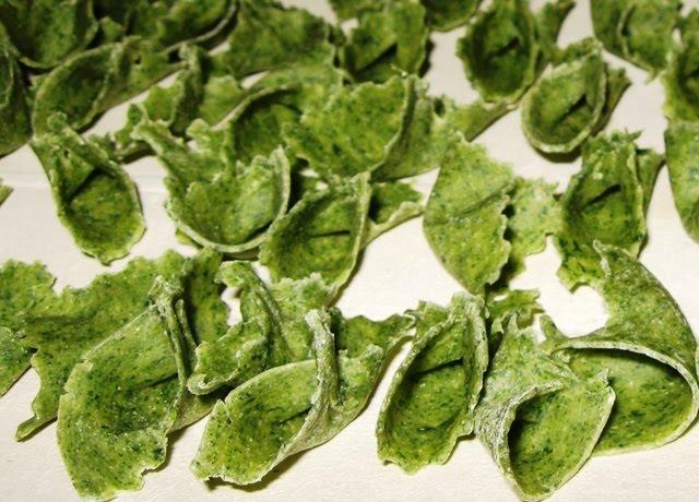Cucinario di nonna ivana il radicchio verde da taglio le for Insalata da taglio