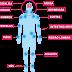 Sobre a fibromialgia causa iniciais sobre a fibromialgia