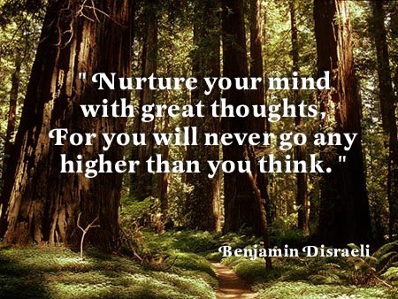 Nurture your mind -Benjamin Disraeli