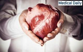 Αναρωτηθήκατε ποτέ γιατί ΔΕΝ εμφανίζουμε καρκίνο στην καρδιά;