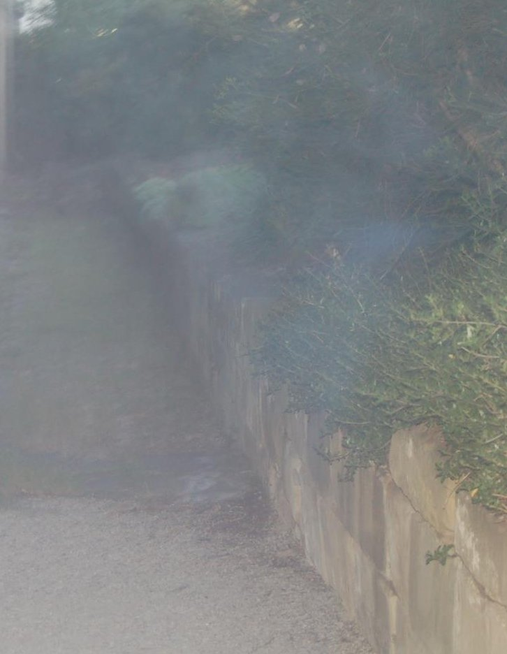 Photo of alleged ghost at 'South Brisbane Cemetery'. In truth it was taken in Tasmania.