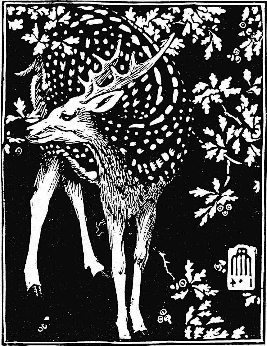 Maxwell Armfield deer