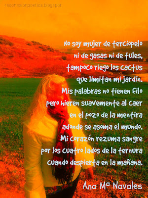 blogdepoesia-poesia-miguel-angel-cervantes-mujer