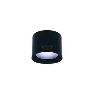 LED吸頂筒燈 12W 4吋(黑)