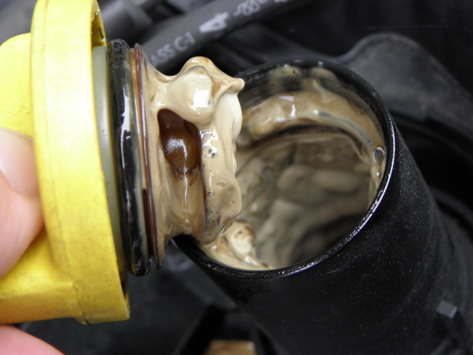 Water in the engine oil