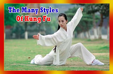 The Many Styles Of Kung Fu